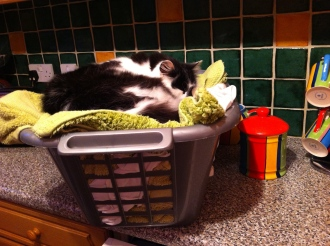 who can resist clean washing?