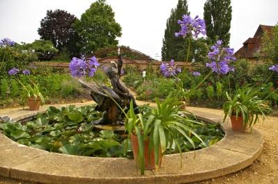 Barrington kitchen garden