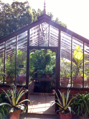 greenhouse envy