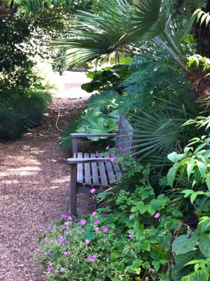 tranquil bench