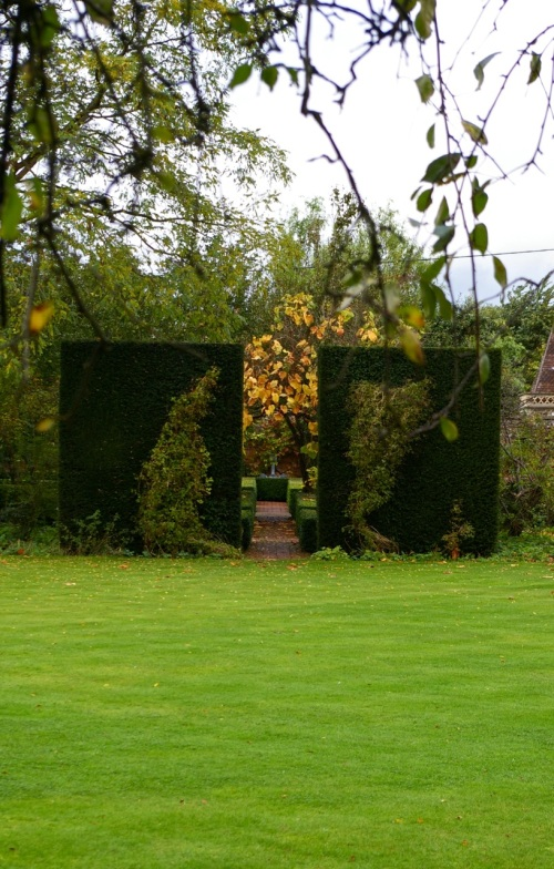 love these living screens between garden 'rooms'