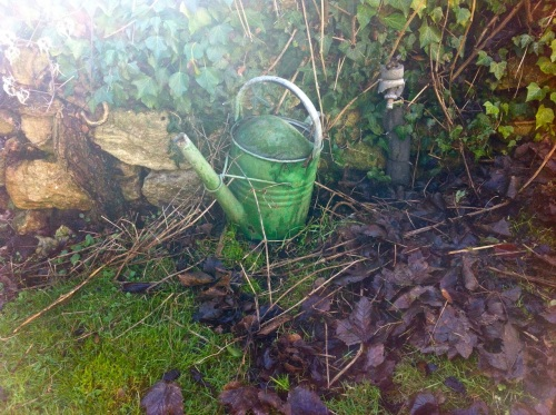 arty watering can