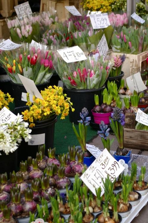 flower stall on Milsom Street