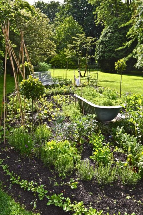 2014 May 5 Bath WI garden - 063