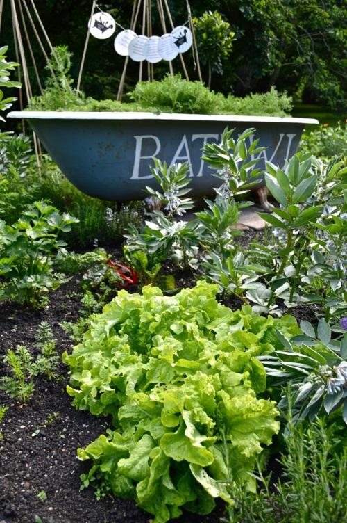 2014 May 5 Bath WI garden - 074