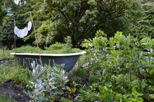 2014 May 5 Bath WI garden - 080