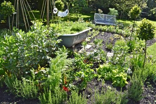 2014 May 5 Bath WI garden - 083