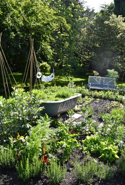 2014 May 5 Bath WI garden - 084