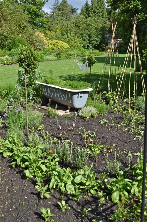 2014 May 5 Bath WI garden - 096