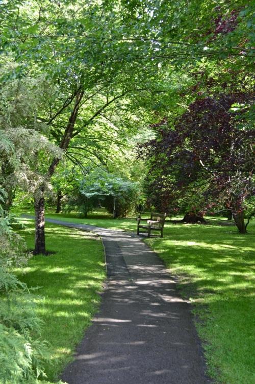 2014 May 5 Bath WI garden - 100