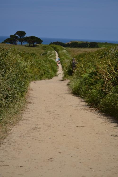 Guernsey June 2014 - 501
