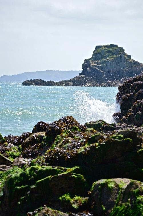 Guernsey June 2014 - 516