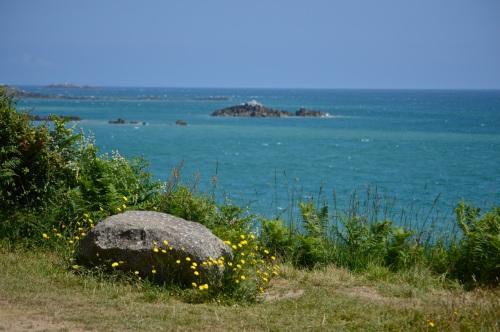 Guernsey June 2014 - 551