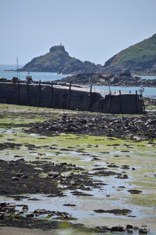 Guernsey June 2014 - 603