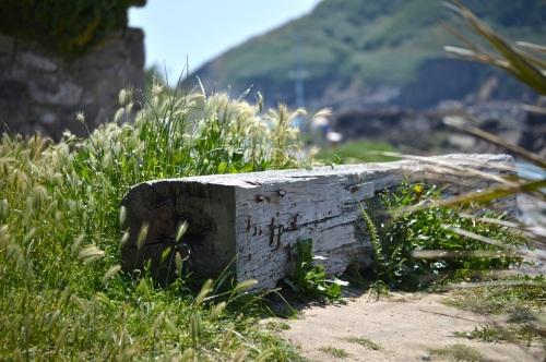 Guernsey June 2014 - 619