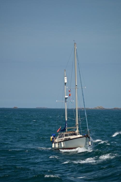 Guernsey June 2014 - 673