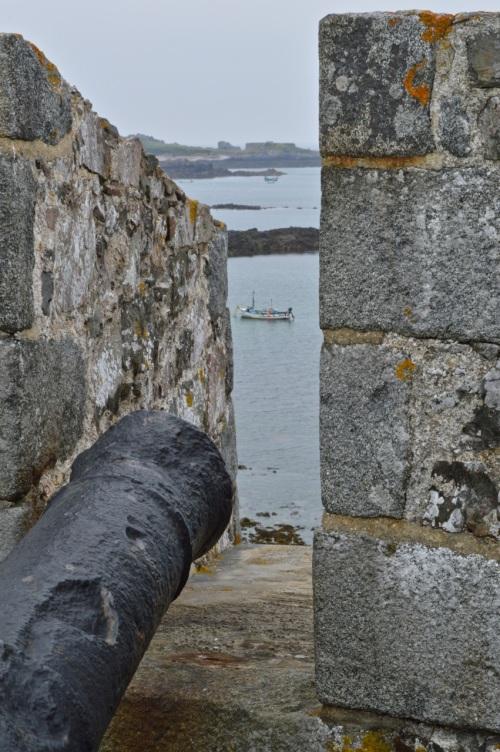 Guernsey June 2014 - 697