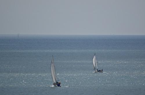 Guernsey June 2014 - 856