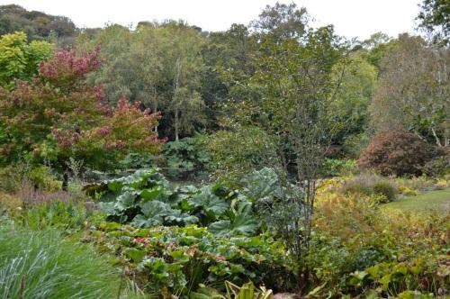 arlington court and rosemoor - 134