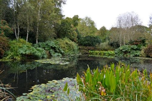 arlington court and rosemoor - 137
