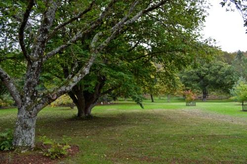 arlington court and rosemoor - 146