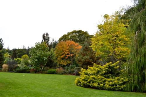 arlington court and rosemoor - 153