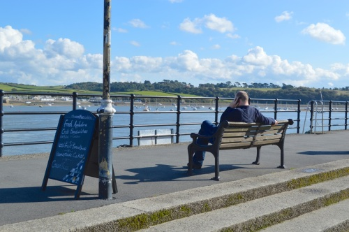 clovelly and appledore - 155