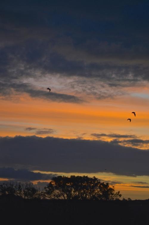 sunrise1 - 23