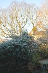 frost 29dec05
