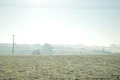 frost 29dec39
