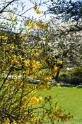 Kilver Court 18 april 201516