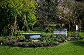 wi garden 15 april 201505