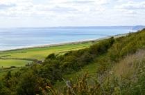 Dorset 02 80