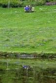 Stourhead 15 may 201563