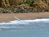 West Bay May 201507