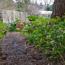 The Bath Priory open garden - 31