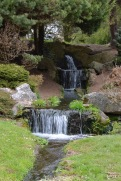 Bicton Park - 12