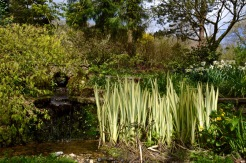 burrows farm gardens - 21