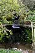 burrows farm gardens - 22