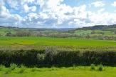 burrows farm gardens - 3