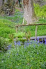 burrows farm gardens - 49