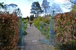 burrows farm gardens - 6