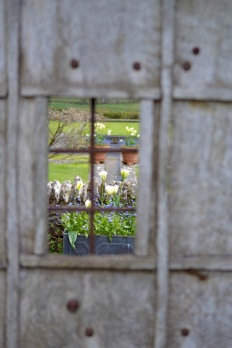 burrows farm gardens b - 3