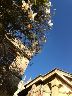 Oxford March 2017 - 131
