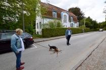 sweden blog - 16